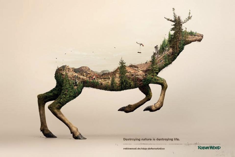 robin wood destroy nature destroying life